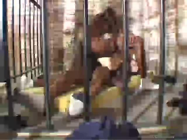Mason's Sexual Disorder (Platinum X Pictures) Screenshot 7
