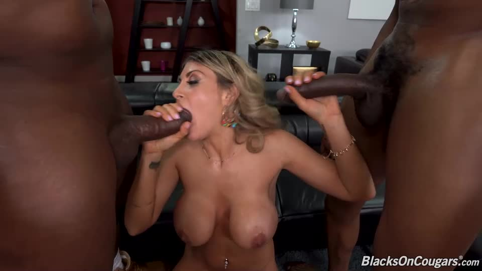 Double Penentration (BlacksOnCougars / DogFartNetwork) Cover Image