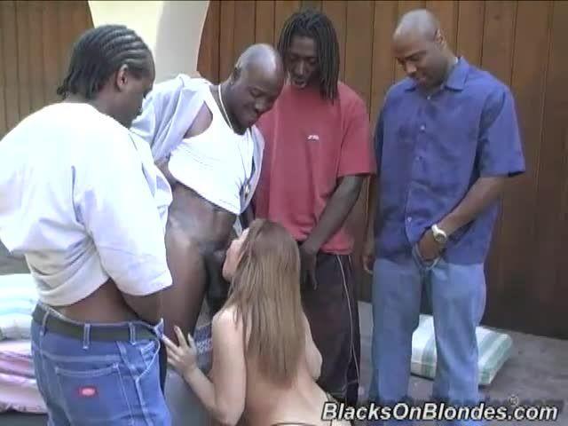 Gangbang Her Little White Thang 3 (Hush Hush Entertainment / Dogfart / BlacksOnBlondes) Screenshot 0