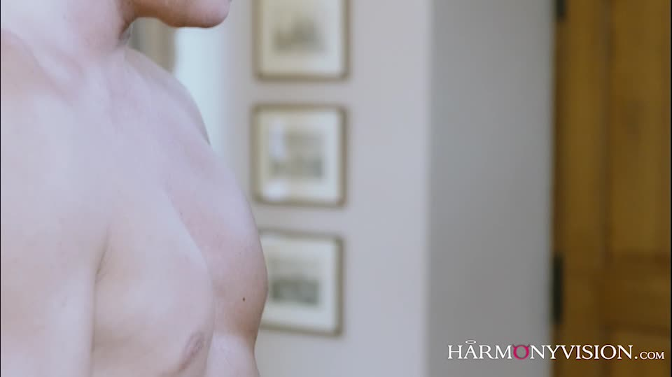 Made To Please (Harmonyvision) Screenshot 6