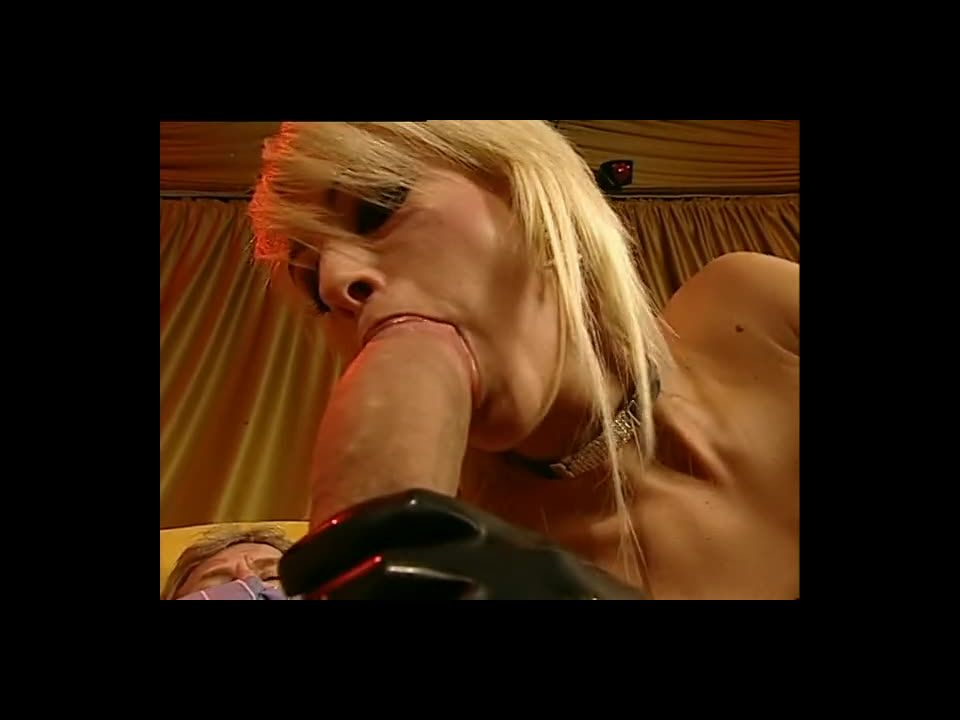 High Class Eurosex / Das Edelmodel / Sensazioni (Pleasure Productions / Pink'O) Screenshot 7