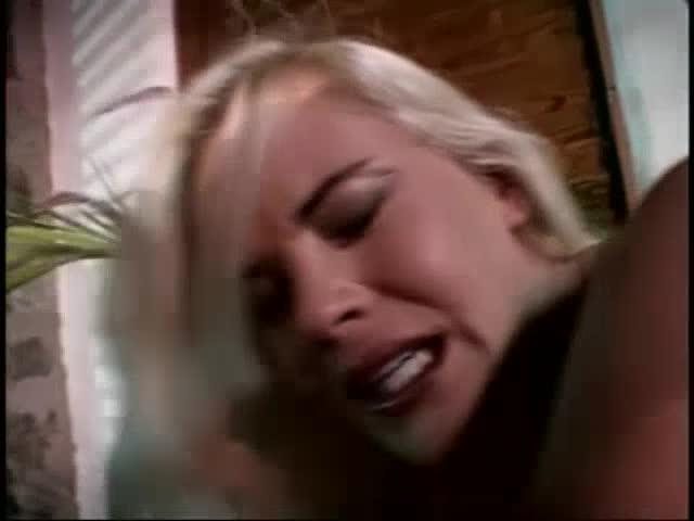 Hustler's Babes 3: Lust in Paradise (Hustler Video) Cover Image