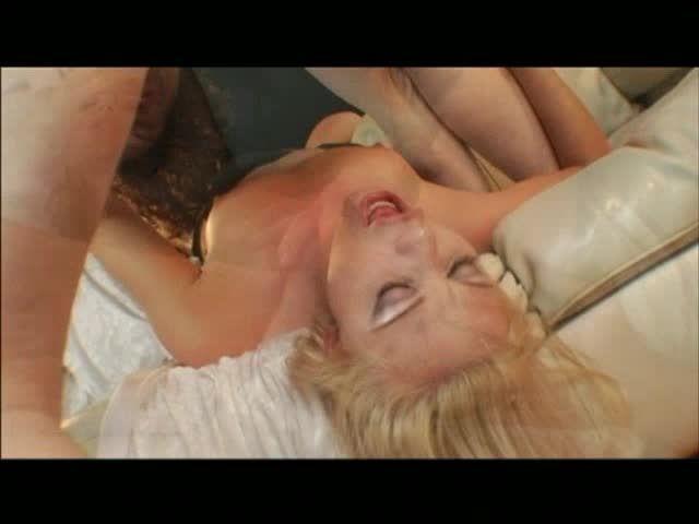 Camp Ass (Mach 2 Entertainment) Screenshot 1