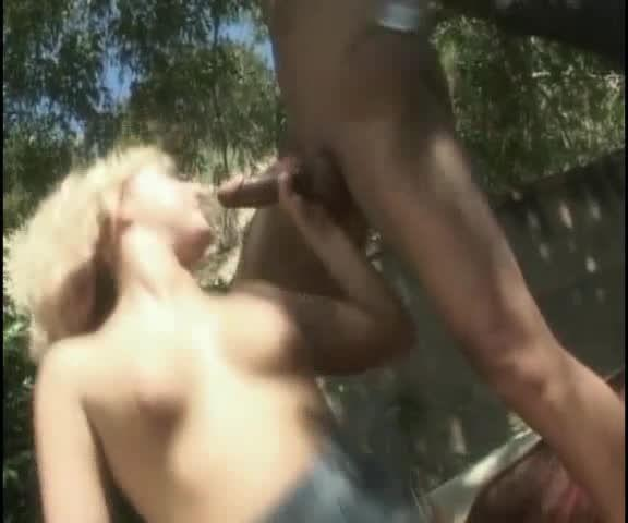Blacks, Blondes and One Latina (VCA) Screenshot 8