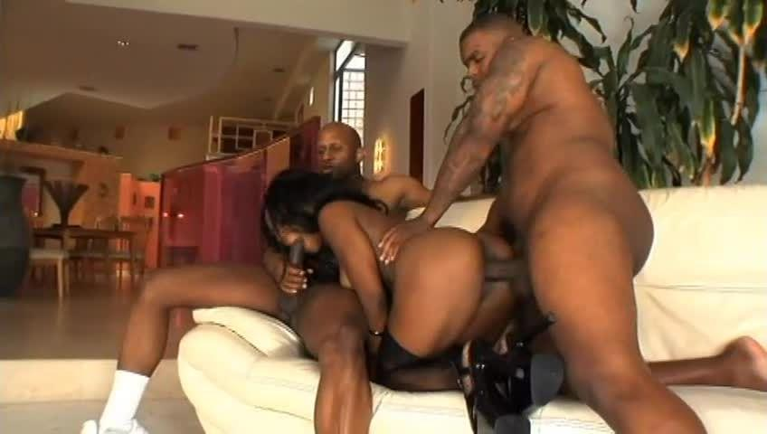 Black Mother Fuckers 2 (West Coast Productions) Screenshot 6
